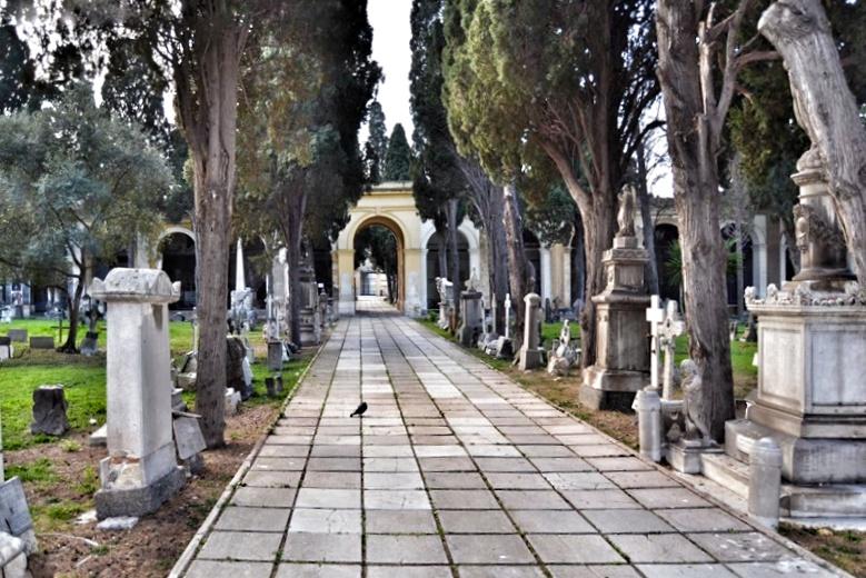 Uno dei viali del Cimitero di Bonaria